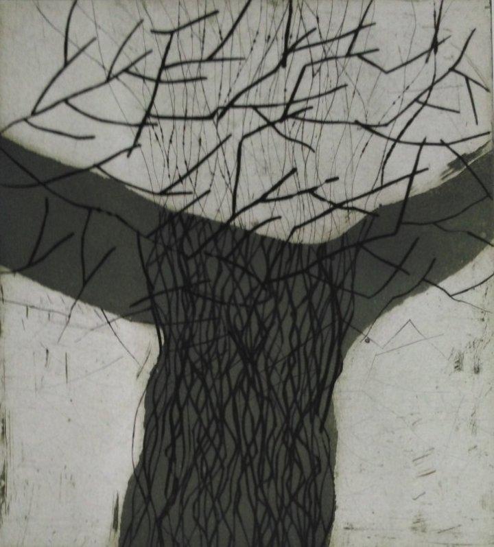 Zyklus Arboretum No 2, Kaltnadel, Aquatinta, Aufl. 4 Ex., 36 x 32,2017